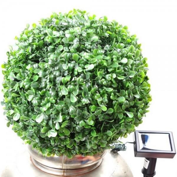 Buchsbaumkugel mit 20 Solar LED Ø 20cm