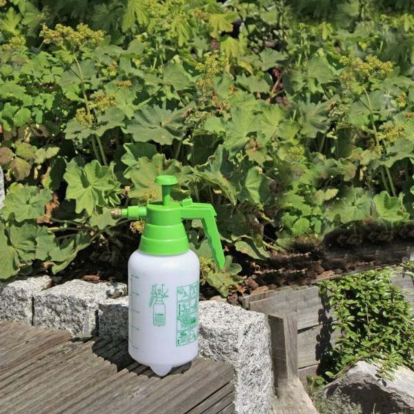 Drucksprüher 1 Liter B Ø11 x H 30 504372